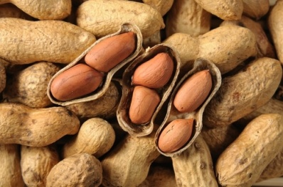 Peanut shells are edible; you don't actually have to take them off to eat the peanut.